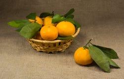 Mandarines en la cesta Imágenes de archivo libres de regalías