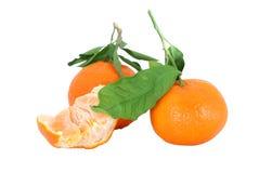 Mandarines enteros y pelados, aislados, camino Imagen de archivo