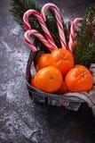 Mandarines et canne de sucrerie Fond de Noël Photos stock