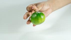 Mandarines et tranches sur des oranges de mains avec la vitamine C photographie stock libre de droits