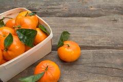 Mandarines fraîches avec la feuille Images libres de droits