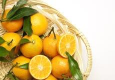 Mandarines fraîches avec les lames vertes Images stock