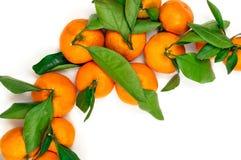 Mandarines fraîches avec les lames vertes Photo libre de droits