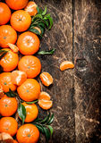 Mandarines fraîches avec les lames vertes Photos stock