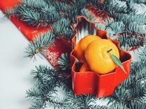 Mandarines fragantes que mienten en la tabla cerca del árbol de navidad Imagen de archivo
