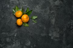 Mandarines. Group of three mandarines with leaves on a black cement background with copy space for your text royalty free stock images