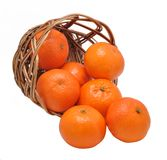 Mandarines in the inverted basket Stock Images