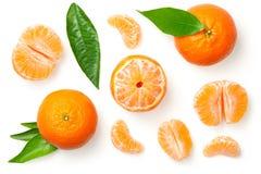 Mandarines Isolated on White Background royalty free stock photography