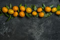 Mandarines. With leaves in a row on a black cement background with copy space for your text stock image