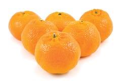 Mandarines mûres Image stock