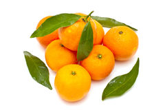 Mandarines mûres Images stock