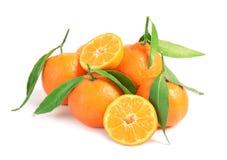 Mandarines mûres savoureuses avec des feuilles sur le fond blanc images libres de droits