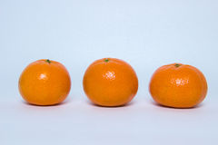 mandarines mûres Images stock