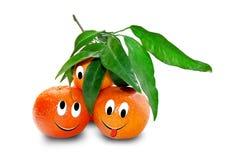 Mandarines mûres d'isolement sur le blanc Photographie stock libre de droits
