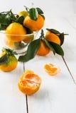 Mandarines maduros con las hojas fotografía de archivo libre de regalías