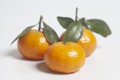 Mandarines maduros con las hojas verdes fotos de archivo