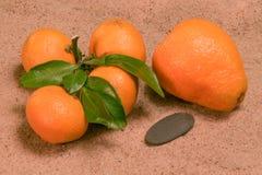 Mandarines med gröna sidor på sanden Royaltyfri Fotografi