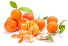 Mandarines o clementinas con segmentos con las hojas Imagen de archivo libre de regalías
