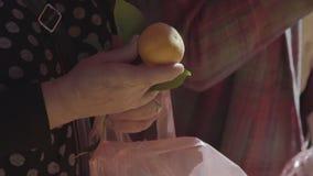 Mandarines och plast- arkivfilmer