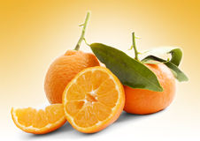 Mandarines odizolowywający Fotografia Stock