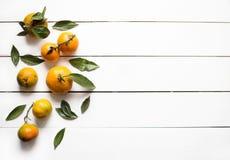 Mandarines oranges fraîches avec des feuilles sur la vue supérieure en bois blanche de table Photo stock