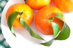 Mandarines organiques dans un plat blanc d'en haut Image stock