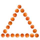 mandarines ostrosłup Obraz Stock