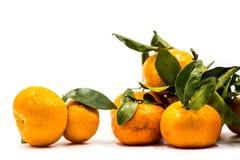 Mandarines ou mandarines d'isolement sur le fond blanc Images stock