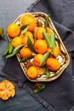 Mandarines sélectionnées fraîches sur une table foncée Vue supérieure photographie stock libre de droits