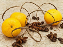 Mandarines and spices Royalty Free Stock Photo