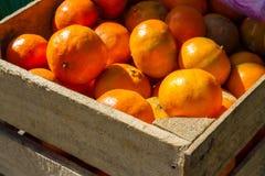 Mandarines sur le marché en plein air Photos stock