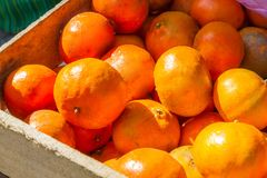 Mandarines sur le marché en plein air Photographie stock libre de droits