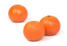 Mandarines sur un fond blanc. Photo stock
