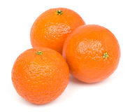Mandarines sur un fond blanc. Photos stock