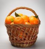 Mandarines Royalty Free Stock Photo