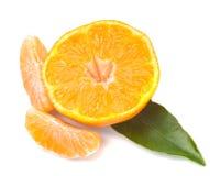 Mandarines Stock Image