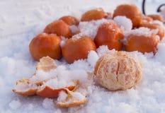Mandarines under snö fotografering för bildbyråer