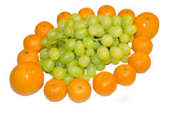 Mandarines and vine Stock Photography