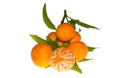 Mandarines z liścia zakończeniem Fotografia Stock