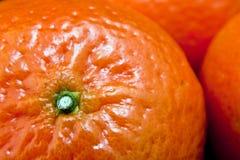 mandarinestjälk Arkivbilder