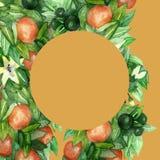Mandarinfilialer, rund ram med gröna sidor, blommor på isolerad orange bakgrund stock illustrationer