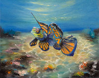Mandarinfish met onkruid Stock Fotografie