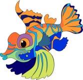 Mandarinfish Stock Image
