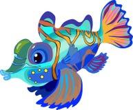 Mandarinfish Stock Photos