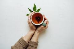Mandarinfrukt är smaklig mat Royaltyfria Foton