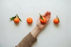 Mandarinfrukt är smaklig mat Royaltyfri Fotografi