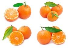 Mandarini Immagini Stock