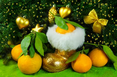 Mandarini accanto all'albero di Natale Fotografie Stock Libere da Diritti