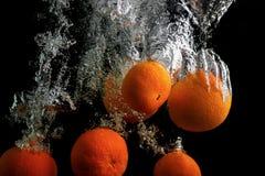 Mandarini in acqua Fotografie Stock