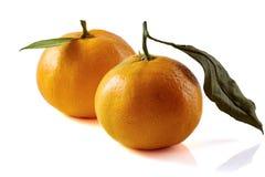 Mandarini con i fogli isolati su bianco Immagini Stock